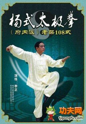 杨式108式太极拳