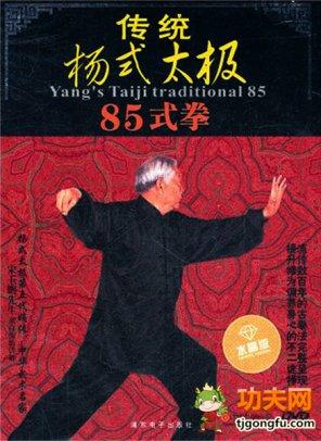 杨式85式太极拳