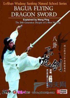 武当八卦飞龙剑