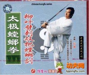 太极螳螂拳柳叶劈刺双把螳螂剑