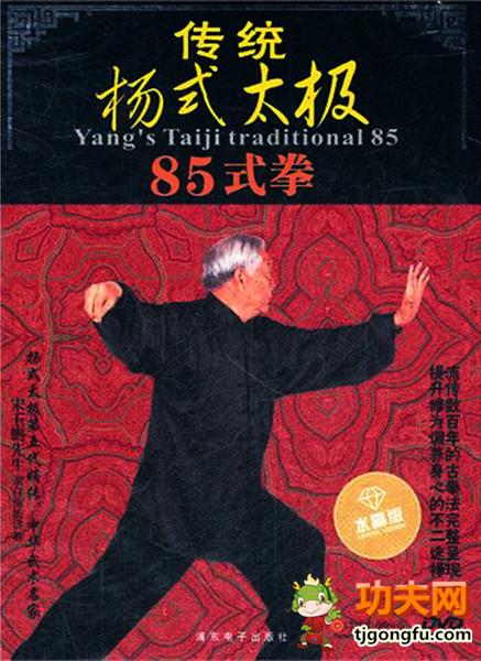 传统杨式太极85式拳